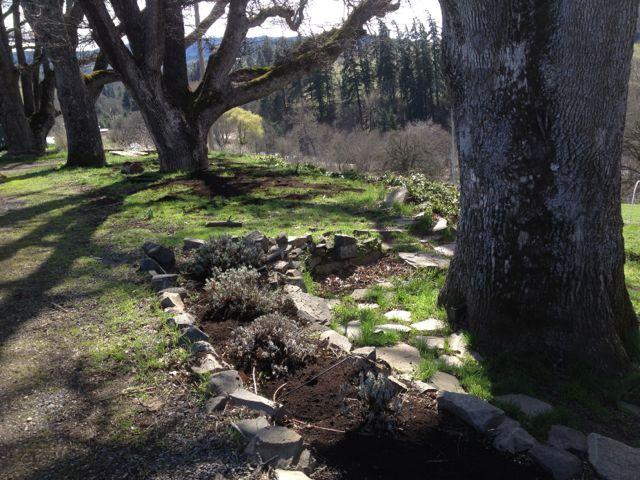 Mosier Valley Organics