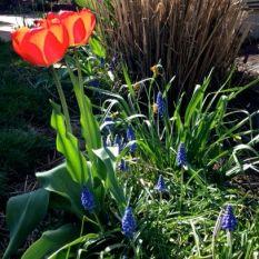 spring 14 2