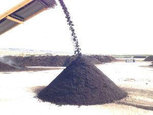 screening compost again
