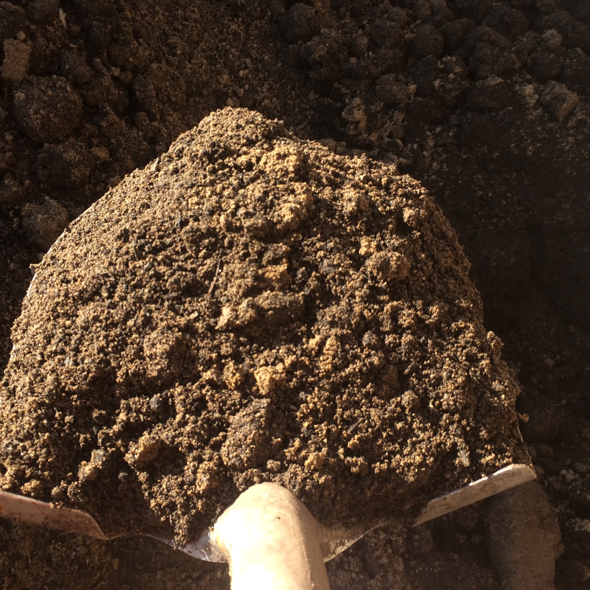 Compost and soil blends dirt hugger local compost in for Dirt and soil